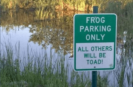 Don's Puns: Frog Parking Only