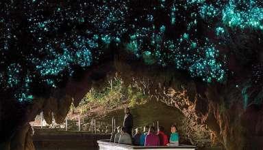 Glowworm Grotto
