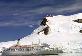 cruise ship and orcas at the Antarctic