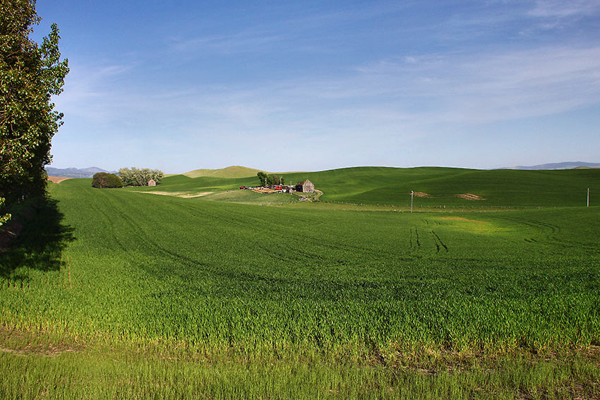 rolling hills, Palouse Scenic Byway