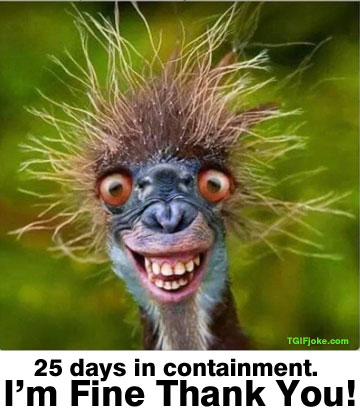 Parting Shots: 25 Days in Containment
