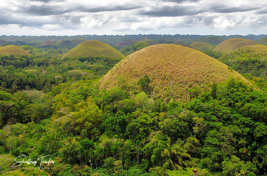 view of the Chocolate Hills from a view deck in Carmen