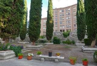 Valladolid garden