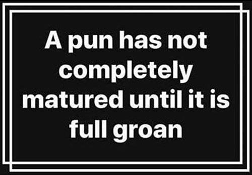 Don's Puns: Full Groan