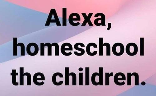 Parting Shots: Homeschool