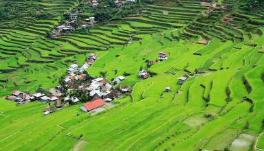 rice terraces in Batad village, Banaue, Ifugao