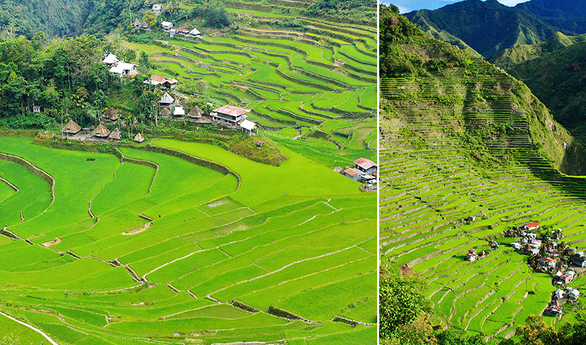 two views of the rice terraces in Batad village, Banaue