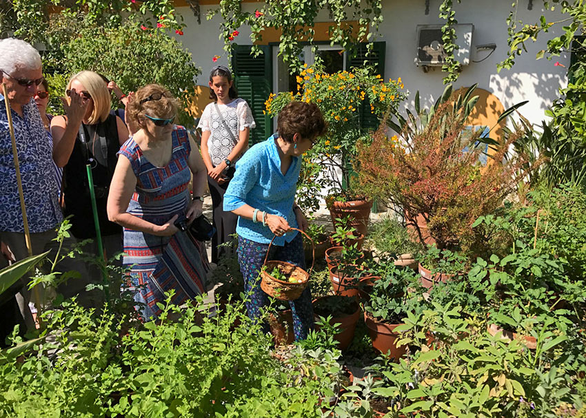 Duchess Nicoletta Tomasi with guests gathering herbs at the at the Palazzo Lanza Tomasi garden