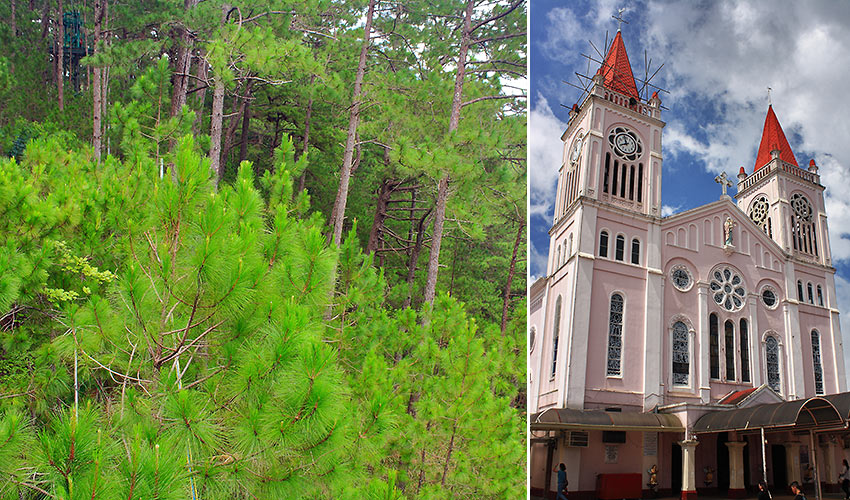 pine trees and the Our Lady of Atonement Cathedral in Baguio City