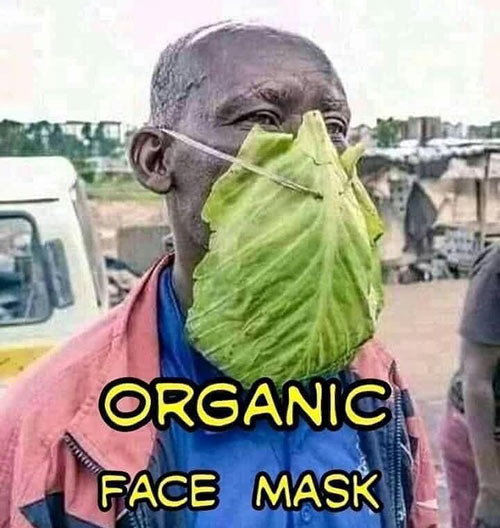 Parting Shots: Organic Face Mask