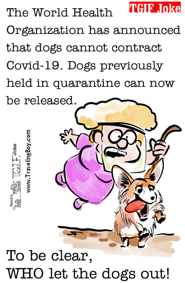 TGIF Joke: Covid Gag 4