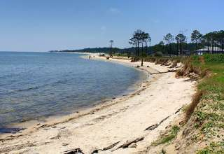 beach at Dauphin Island