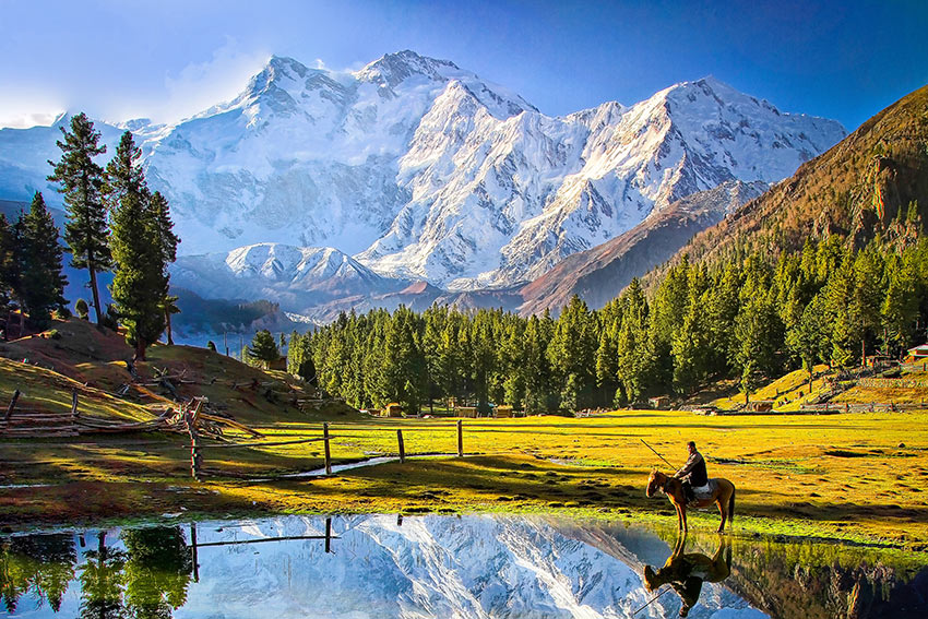 Fairy Meadows and Nanga Parbat, Gilgit-Baltistan, Pakistan