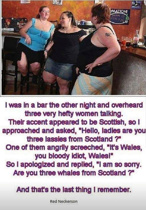 Parting Shots: Scotland or Whales
