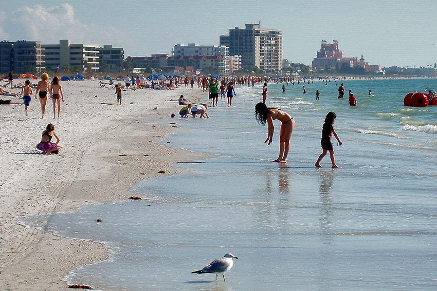 beach at St. Petersburg, Florida