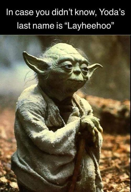 Parting Shots: Yoda Last Name