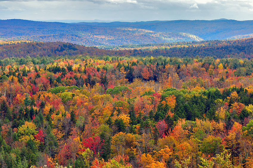 fall colors, Hogback Mountain, Vermont