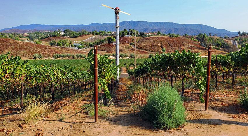 old windmill at vineyard