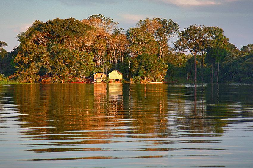 Amazon River banks golden hour view