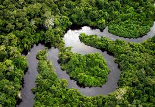 aerial view of a segment of the Amazon River