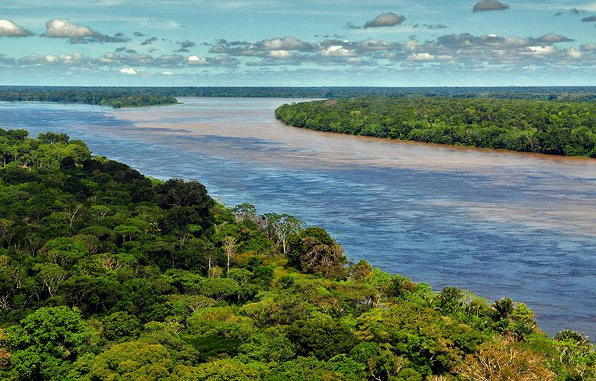 Amazon River and rainforest