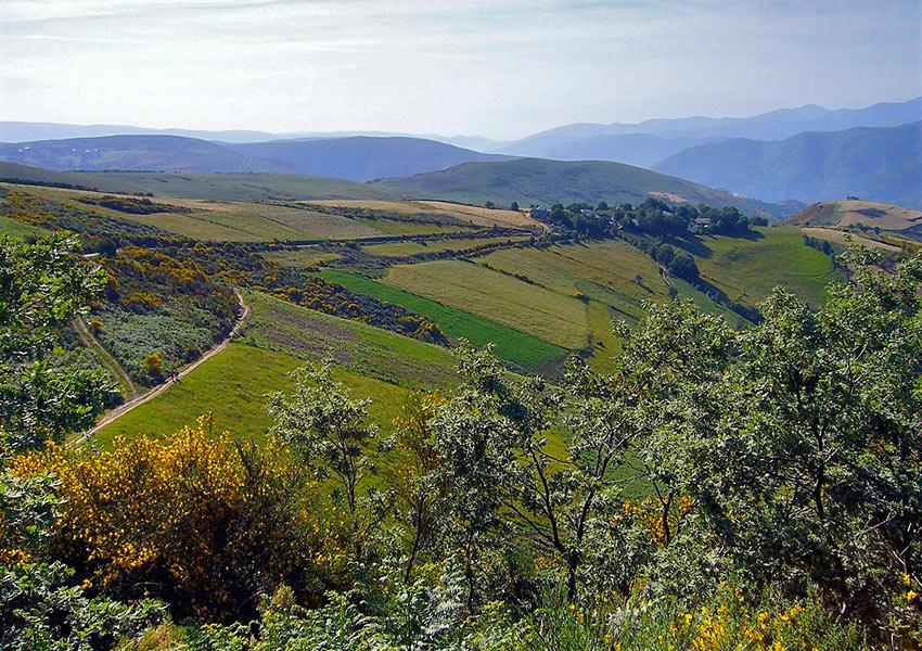 Camino de Santiago Pilgrim Trail, Spain