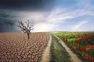 Karma and Climate Change