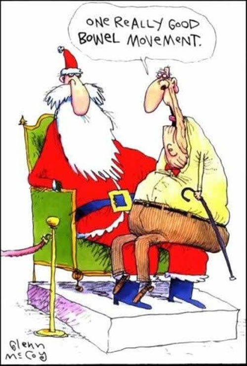 Parting Shots: Christmas Wish