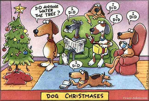 Parting Shots: Dog Christmases