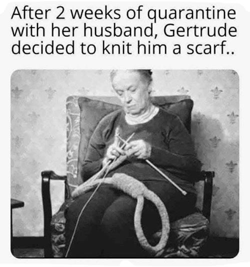 Parting Shots: Gertrude Knits a Scarf