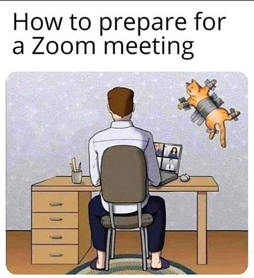 Parting Shots: Preparation for Zoom Meeting