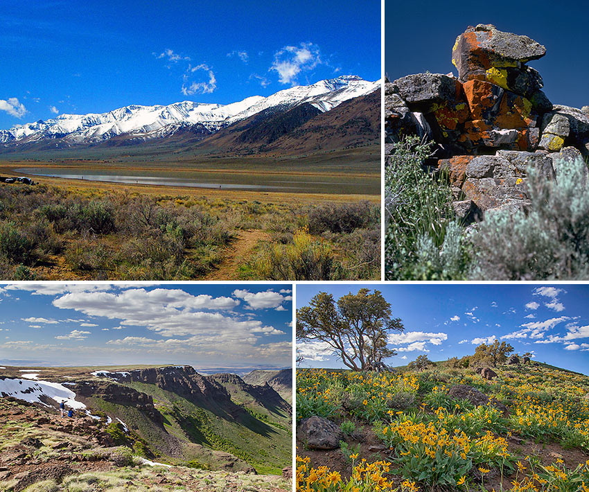 the landscape of Oregon's Steens Mountain