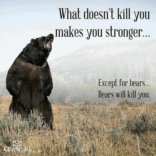 Parting Shots: Bears Will Kill