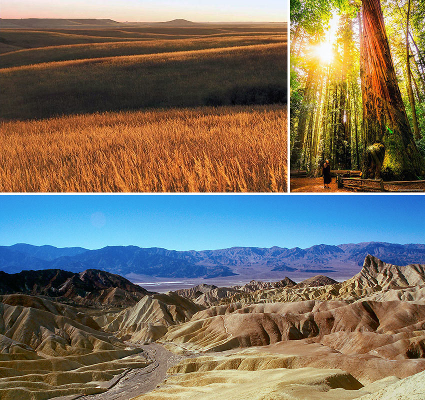 scenes from California Redwood National Park, Flint Hills and Death Valley