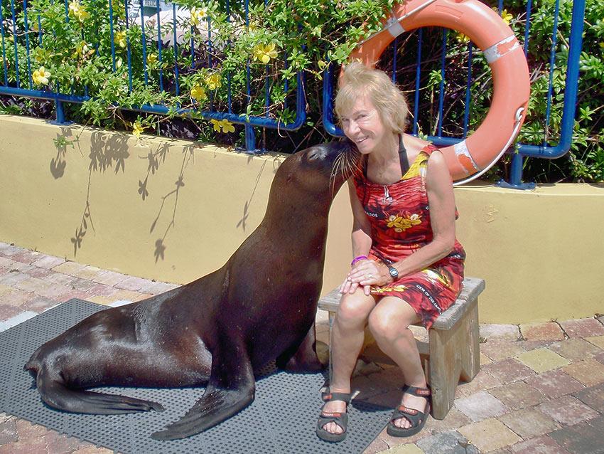 sea lion kissing writer