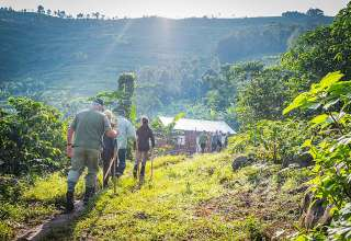 hiking into the Bwindi Impenetrable National Park
