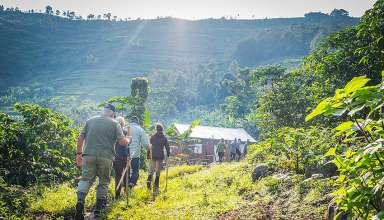 hiking into the Bwindi Impenetrable National Park