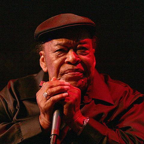 James Cotton in 2007